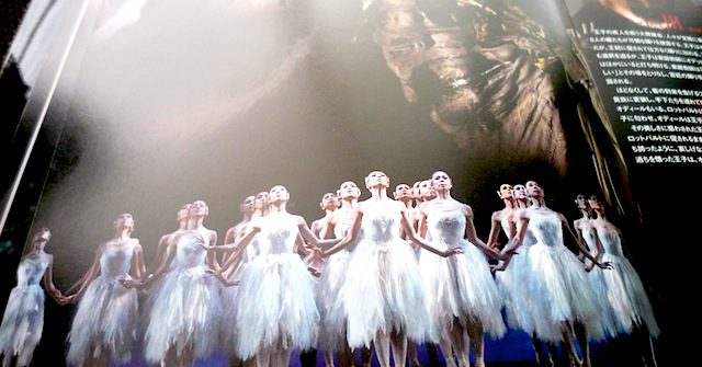 """ Swan Lake ""  K-BALLET COMPANY Autumn Tour 2011"