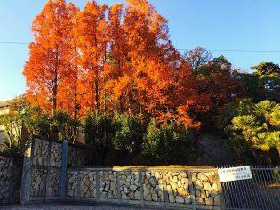 ユンヌピエールアンプリュス10th神戸催事を開催しました。