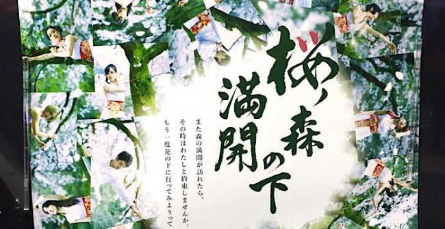 『 桜の森の満開の下 』