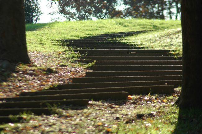 国営昭和公園内の会談の写真