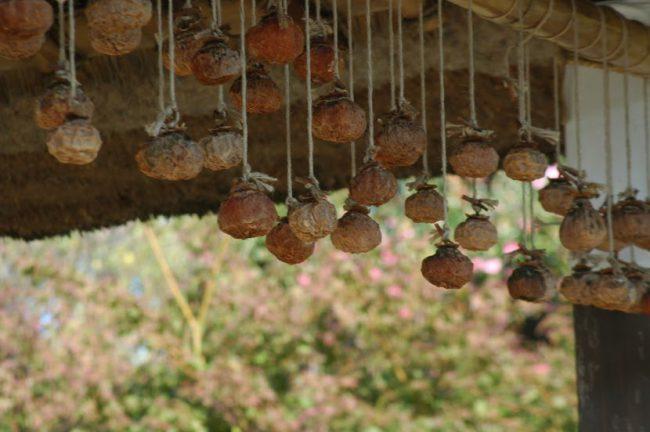 干し柿を吊るした民家の軒先の写真