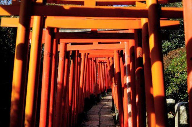 根津神社(乙女稲荷神社の千本鳥居)