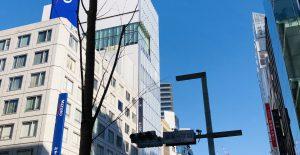 銀座中央通りの街路樹
