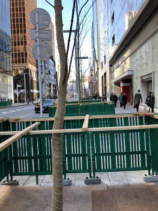 銀座中央通りの樹木の植え替え作業が進んだようです。