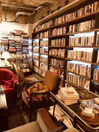こだわりのセレクトされた本たちが並びます。