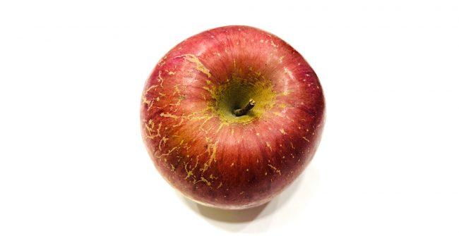訳あり林檎ですが。