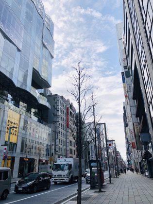 銀座中央通りの朝の風景。