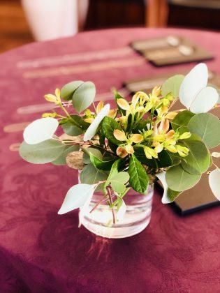 新種のアリストロメイアが可愛い。