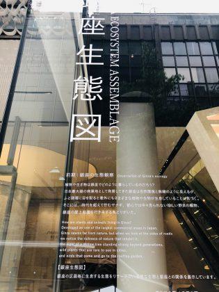 資生堂本社ビルのウィンドウアートが面白い。