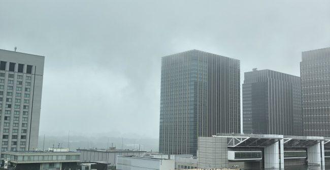 梅雨真っ只中です。